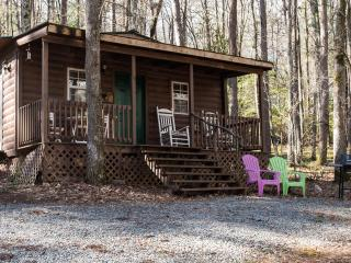 Quaint Cabin in National Park and Toccoa River