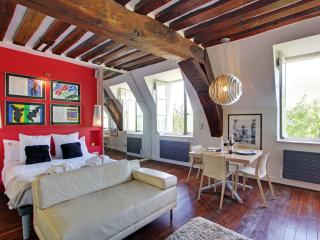 Luxury Large Studio rental, Ile Saint Louis views, Paris