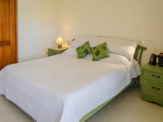 Nice One Bedrooms Penthouse in Hispaniola Sol