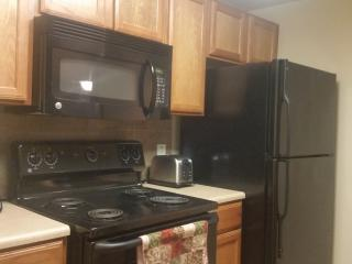 Gracious Upscale Living Apartment, San Antonio