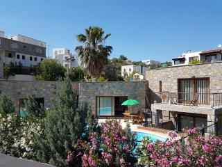 Luxury villa with private pool In Bodrum, Península de Bodrum