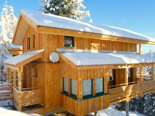 Mountain Lodge Chalet Turrach