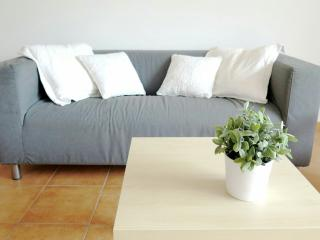 Fantastic Apartment in San Juan de Alicante