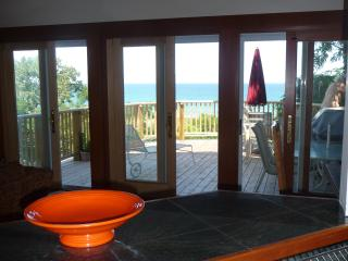 Amazing Lakeview-  White Sand Beach- sleeps 2-17, Michigan City
