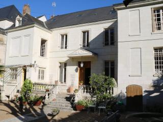 Villa Eve Appartement  a Amboise face a la Loire