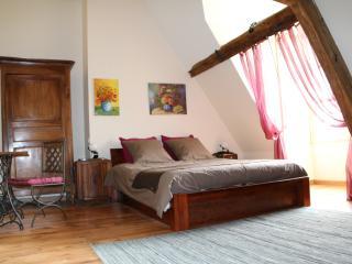 Villa Eve chambres d'hôtes à Amboise face Loire