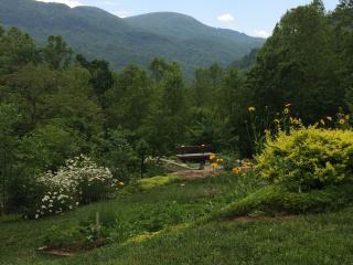 Enchanting garden area