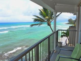 September 1-10 Sale $259|100% Oceanfront Maui Gem|Hear Waves|2BD|270* Ocean View
