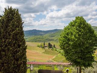 Terre di Melazzano -Apt Chiara, Greve in Chianti