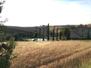La Tana del Bianconiglio - App. Girasole, Gallina