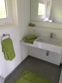 newly renovated bathroom (shower and toilet)