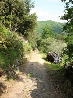 The farm road approach