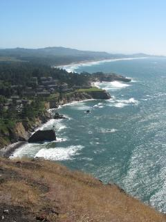 Beautiful Oregon Coast just 20 minutes away. This is taken just North or Florence about 40 mins away