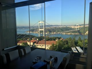 Amazing Bosphorus View Suites