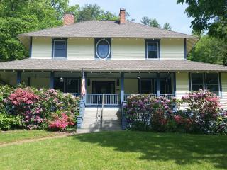 Sweet Suite Grace House Inn Sleeps 4, Mars Hill