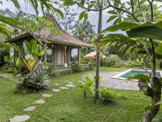 thani villa ubud Bali, Ubud