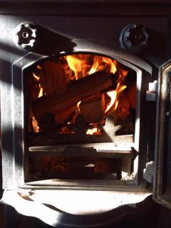 Log Burning Fire