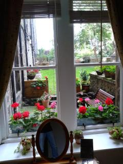 view form the bedroom.