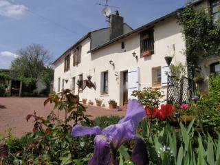ANJOU 200 year old Farmhouse sleeps 6 with Pool, Doue-la-Fontaine
