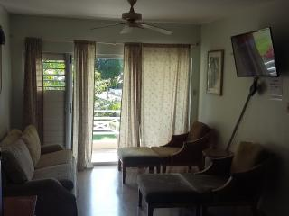 Comfy Home Stay By the River!, Ocho Rios