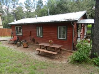Cozy Cabin, Nice Large Party Area, Horse Shoe Pit