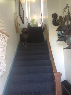 Stairs leading to apartments