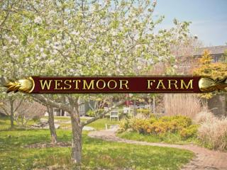 Westmoor Farm Estate, Nantucket