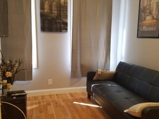 Modern 3 bedroom 2 baths, sleeps 9, Brooklyn