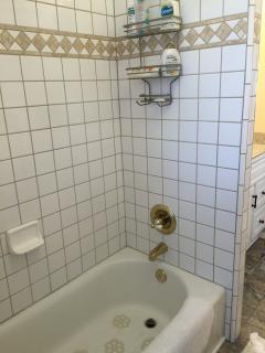 Tile shower in tub