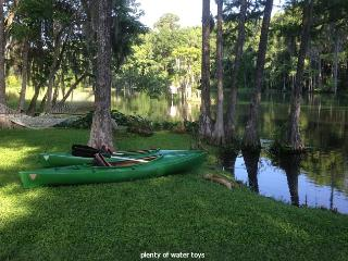 Blue Run Cabin: Unique Rainbow River Location, Dunnellon