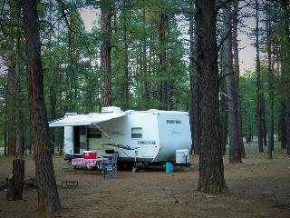 Hassle-free summer camping! 26' camper sleeps 4, Williams