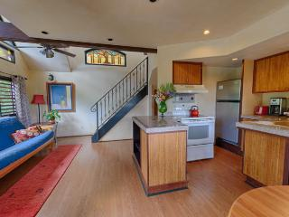 Overview of first floor: Kitchen, living and dining areas.