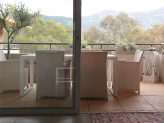 Magnifique duplex  90 m2 et 2 terrasses