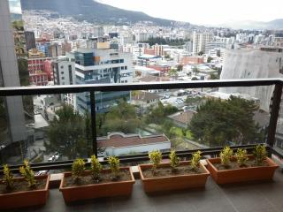 BEAUTIFUL APARTMENT FOR RENT, Quito