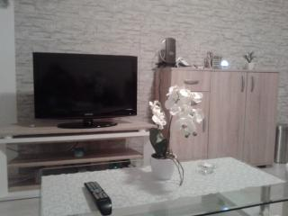Furnished studio,direct bus to the center, Liubliana