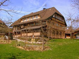 Vacation Apartment in Bernau im Schwarzwald - 646 sqft, quiet, renovated, bright (# 8886)