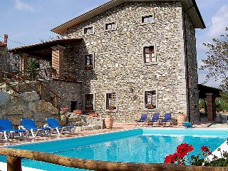 8 bedroom Villa in Sansepolcro, Arezzo, Italy : ref 2009136, Caprese Michelangelo