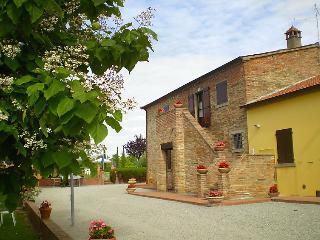 Giuseppe #4328, Cortona