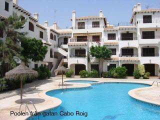 3 bed ground floor at Bella Vista V in Cabo Roig