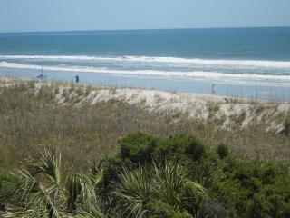 As Good As It Gets 131367, Carolina Beach