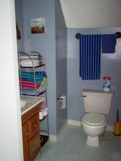 Bathroom with towels, shampoo, conditioner, body wash, and hair dryer.