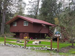 CUTE cabin on the river! Lots of hiking here!