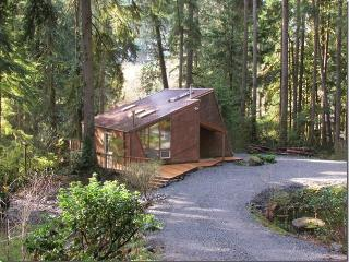 Cabin On The River, In The Woods!, Granite Falls