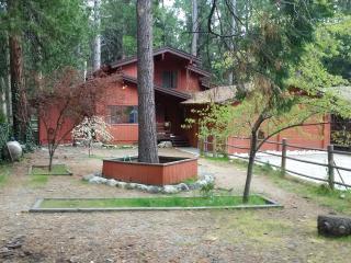 Luxurious Tree House on Strawberry Creek, Idyllwild