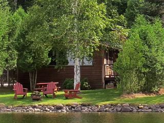 Charming Waterfront Adirondack Cabin - Bear