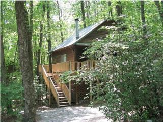 Cabin Nestled in the Woods with Bubbling Hot Tub, Helen