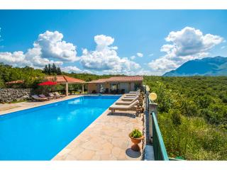 Villa Krnic with Olympic pool, Jacuzzi, Multimedia