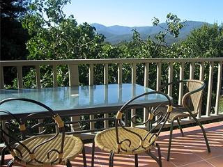 Healesville Apartments - Fig Tree Apartment