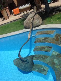 ingresso piscina con scorri mano in ginepro