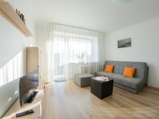 HAPPYINN.LT Sunny river apartment, Kaunas